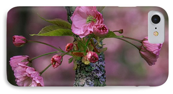 Flowering Almond Iv IPhone Case