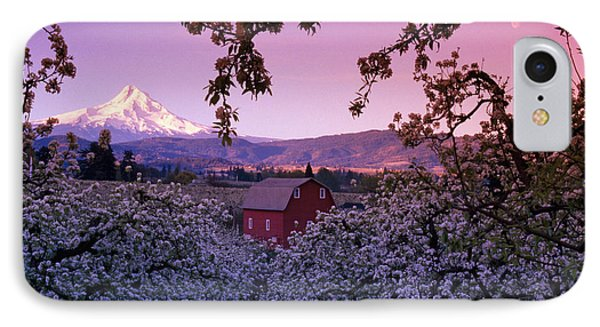 Flowering Apple Trees, Distant Barn IPhone Case