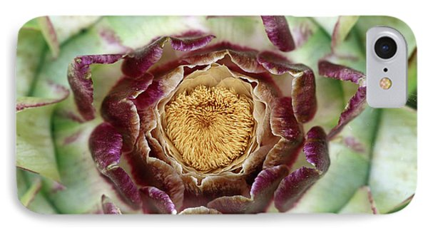 IPhone Case featuring the photograph Flowering Houseleek by Michal Boubin