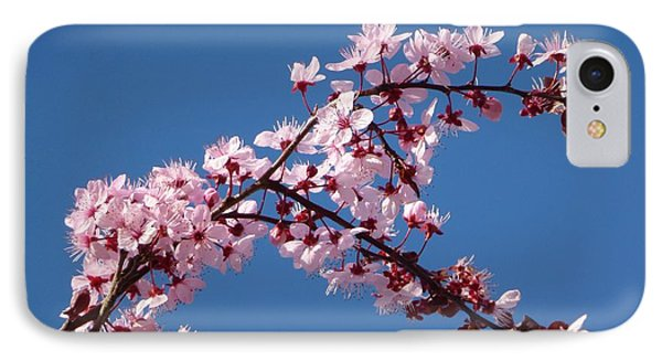 Flowering Of The Plum Tree 4 IPhone Case by Jean Bernard Roussilhe