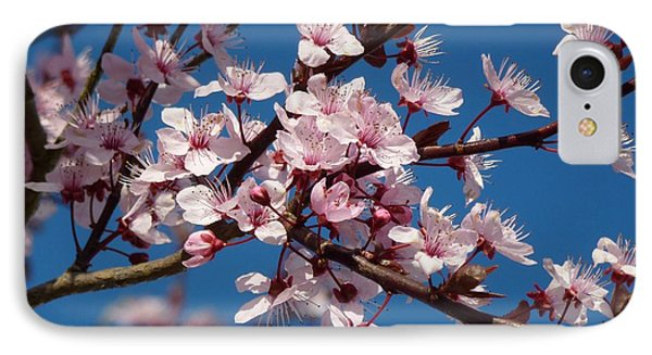 Flowering Of The Plum Tree 5 Phone Case by Jean Bernard Roussilhe