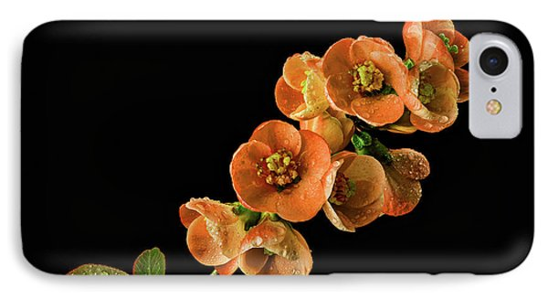 IPhone Case featuring the photograph Flowering Quince Orange by Mary Jo Allen