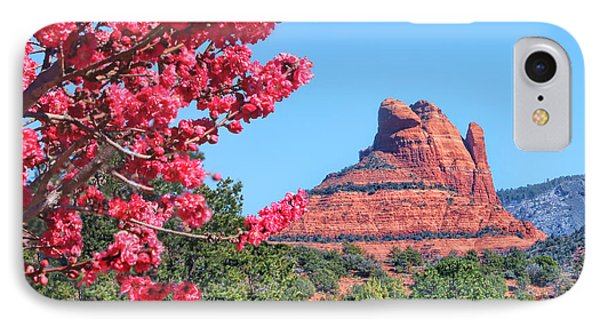 Flowering Tree - Sedona Red Rock IPhone Case by Nikolyn McDonald