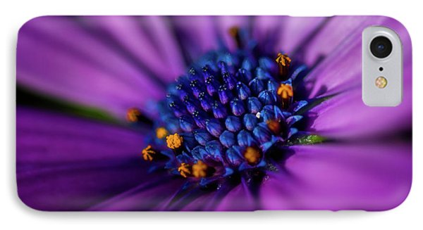 IPhone Case featuring the photograph Flowers And Sand by Darren White