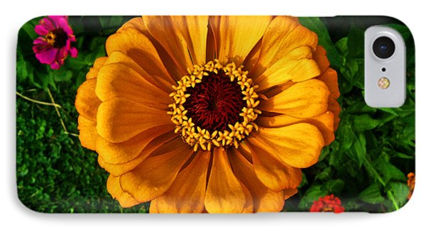 IPhone Case featuring the photograph Flowers In A Flower 005 by George Bostian