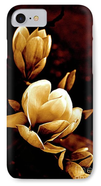 Flowers In Sepia  IPhone Case by Cathy Dee Janes