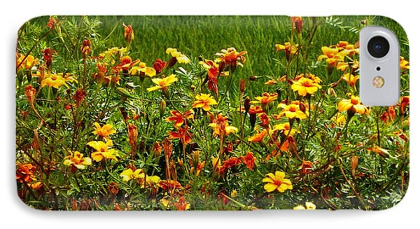 IPhone Case featuring the photograph Flowers In The Fields by Joseph Frank Baraba