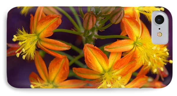 IPhone Case featuring the photograph Flowers Of Spring by Stephen Anderson