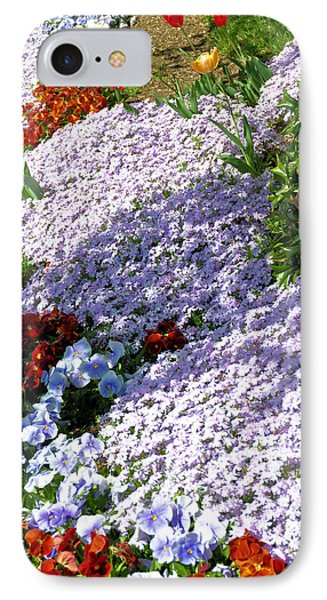 Flowing Phlox Phone Case by Jan Amiss Photography