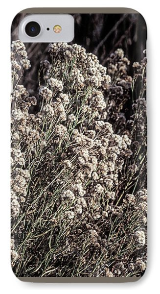 Fluff And Seeds IPhone Case