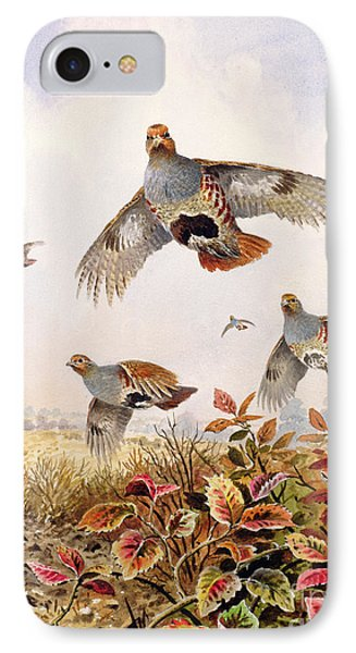 Flushed Partridges IPhone Case by Carl Donner