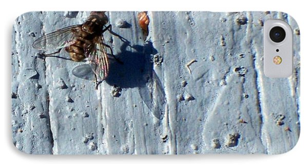 IPhone Case featuring the photograph Fly On The Wall by Betty Northcutt