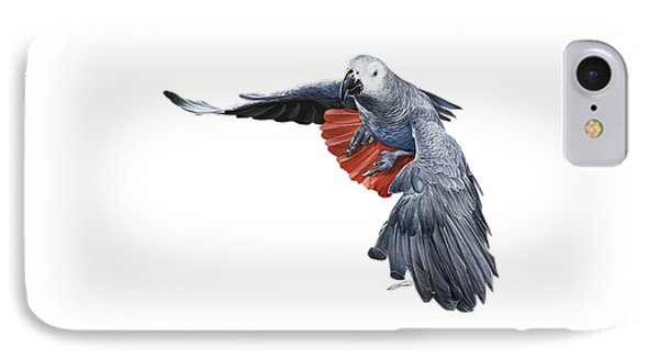 Flying African Grey Parrot Phone Case by Owen Bell