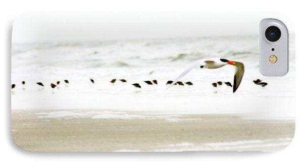 Tern In Flight IPhone Case by Angela Rath