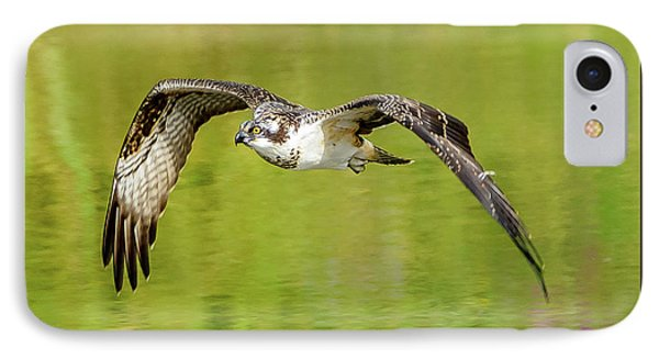 Flying Osprey IPhone Case by Jerry Cahill