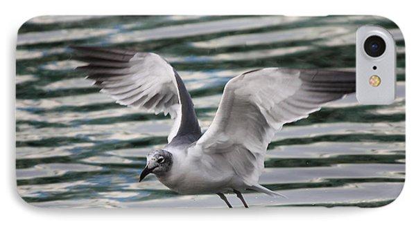 Flying Seagull Phone Case by Carol Groenen