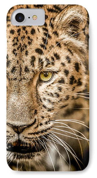 Focus IPhone Case by Paul Neville
