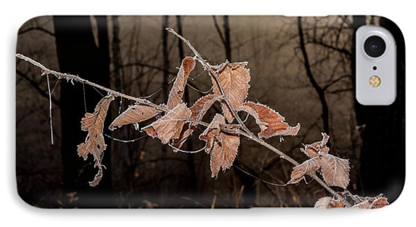Fog And Frost IPhone Case by Annette Berglund