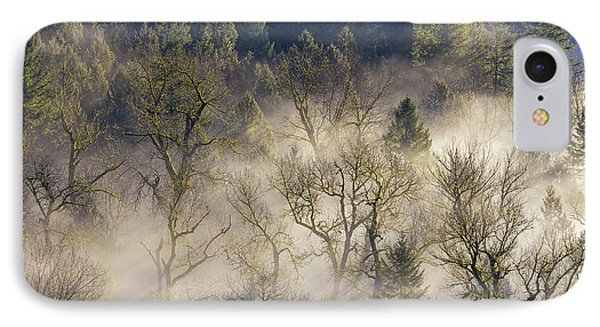Foggy Morning In Sandy River Valley Phone Case by David Gn