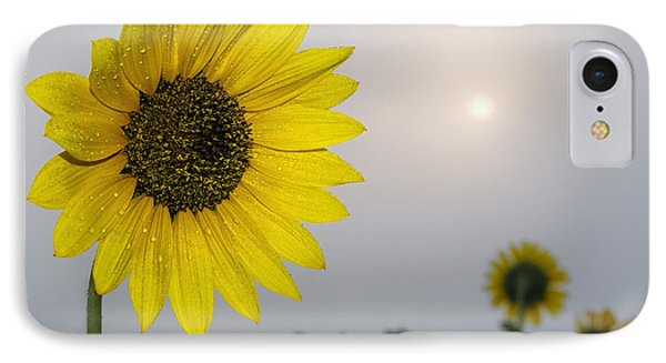 Foggy Sunflowers IPhone Case by Rob Graham