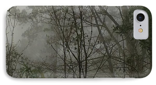 Foggy Woods Photo  IPhone Case by Gina O'Brien