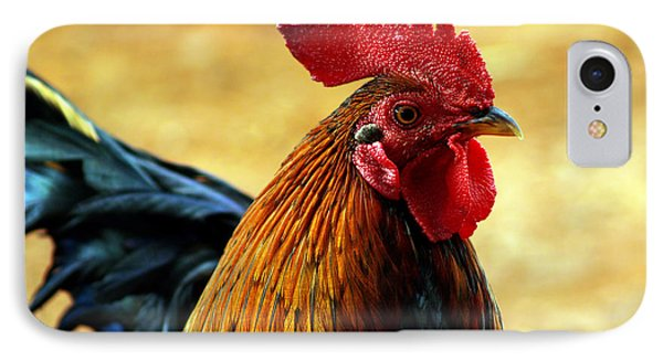 Foghorn I IPhone Case by Patricia Griffin Brett