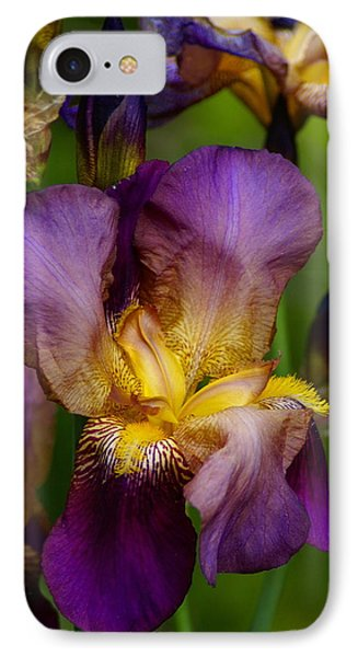 For The Love Of Iris IPhone Case by Ben Upham III