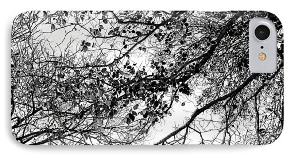 Forest Canopy Bw IPhone Case