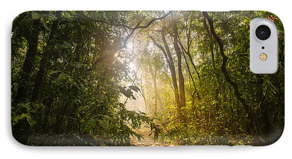 Forest Light At Western Ghats In Karnataka In India IPhone Case by Vishwanath Bhat