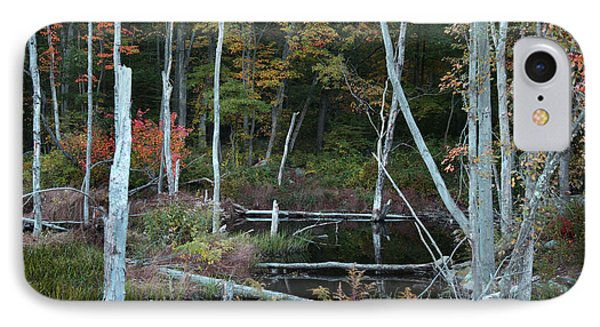 IPhone Case featuring the photograph Forest Pond by Joseph G Holland