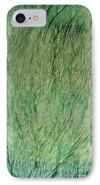 Forest Primordial IPhone Case by Skip Willits