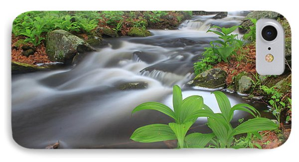 Forest Stream And False Hellabore In Spring IPhone Case by John Burk
