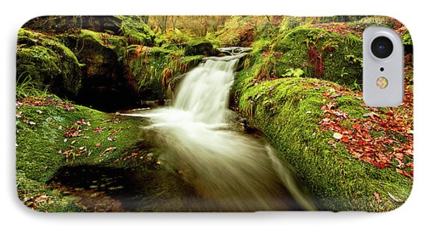IPhone Case featuring the photograph Forest Stream by Jorge Maia