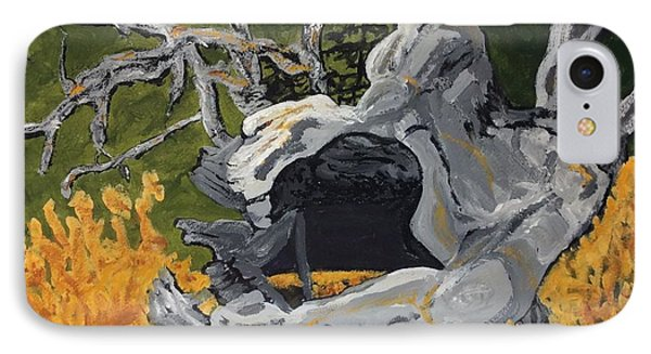 Forest Stump-old Growth Invitation IPhone Case by Anne Marjorie Erickson
