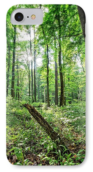 IPhone Case featuring the photograph Forest Sun by Alan Raasch