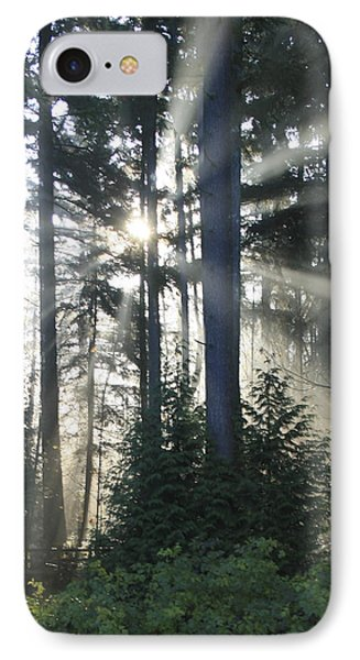 Forest Sunrise IPhone Case by Crista Forest