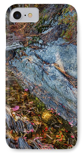 Forest Tidal Pool In Granite, Harpswell, Maine  -100436-100438 IPhone Case