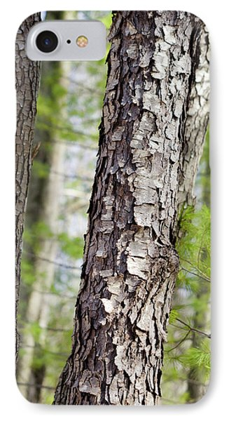 IPhone 7 Case featuring the photograph Forest Trees by Christina Rollo