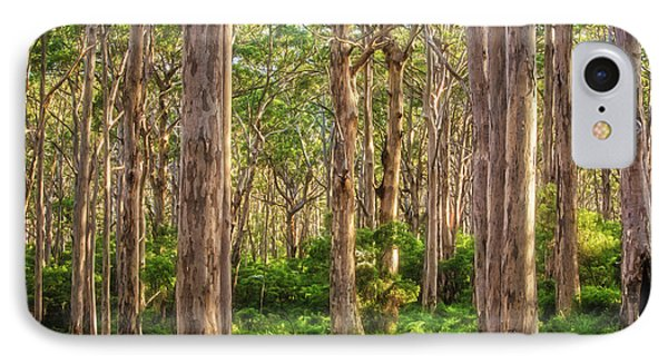 Forest Twilight, Boranup Forest IPhone Case by Dave Catley