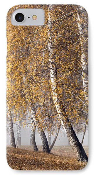 Forest With Birches In The Autumn IPhone Case by Odon Czintos