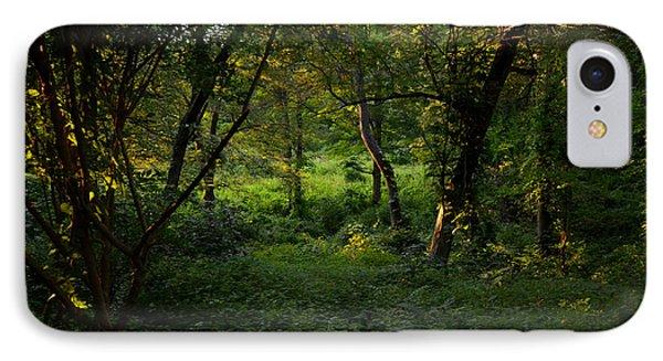 Forestland In Sudbury Ma Wayside Inn IPhone Case