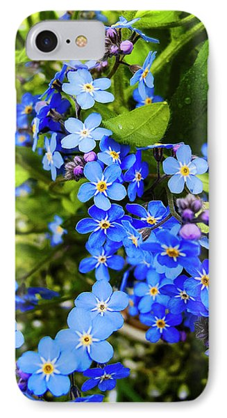 Forget-me-not Flowers IPhone Case by Nat Air Craft