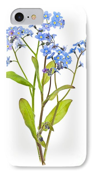 Forget-me-not Flowers On White Phone Case by Elena Elisseeva
