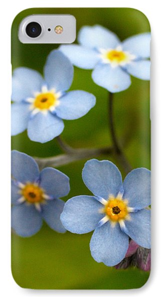 Forget-me-not IPhone Case by Jouko Lehto