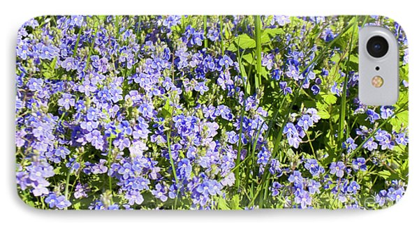 Forget-me-not - Myosotis IPhone Case