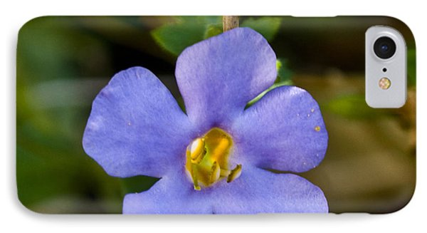 Forget Me Not Phone Case by Svetlana Sewell