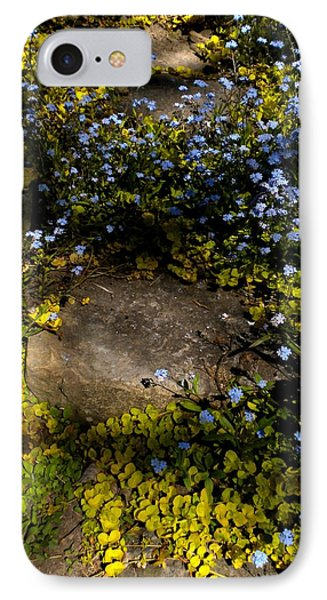 IPhone Case featuring the painting Forget-me-nots 1 by Renate Nadi Wesley