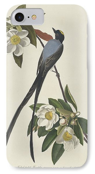 Forked-tail Flycatcher IPhone Case by Dreyer Wildlife Print Collections