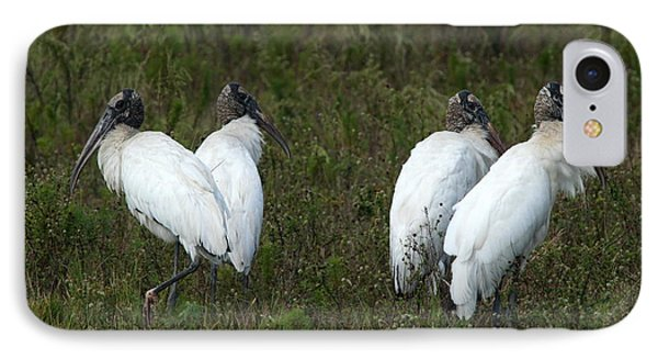 Four Juvenile Woodstorks IPhone Case by Christiane Schulze Art And Photography