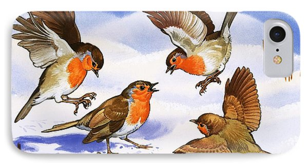 Four Robins In The Snow IPhone Case by English School
